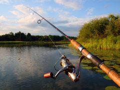 Trouver un club Chasse et pêche