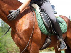 Trouver un club d'équitation